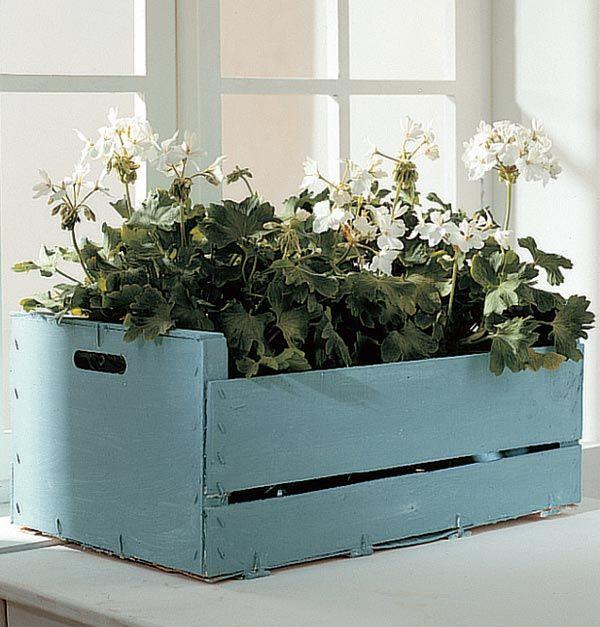 Idea caja flores