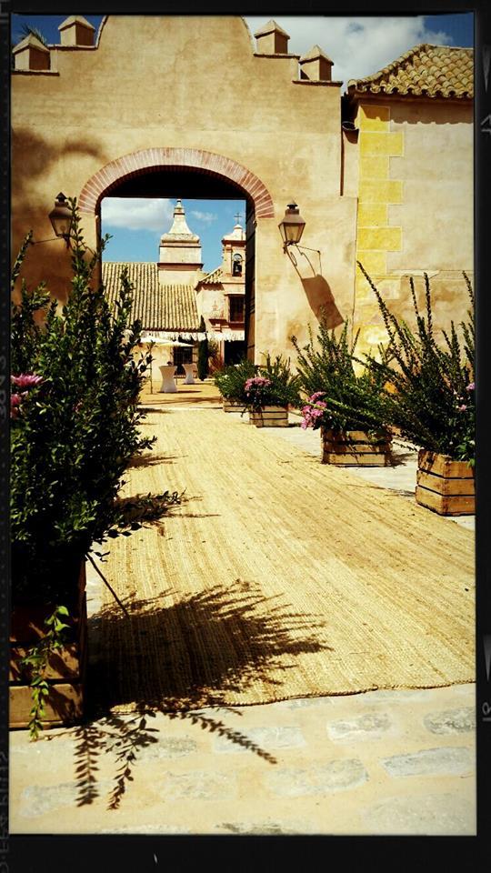 Entrada Hacienda Molinillos alfombra y cajas flores