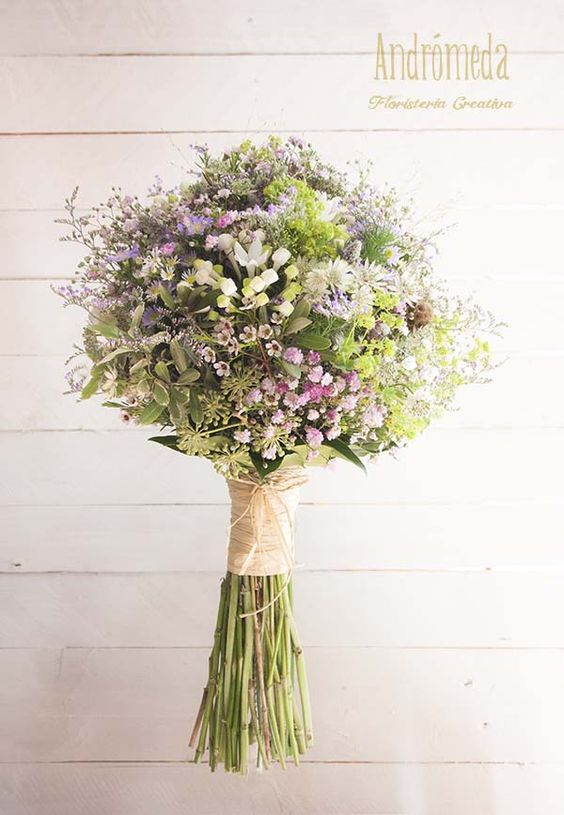 andromeda ramo flores silvestres